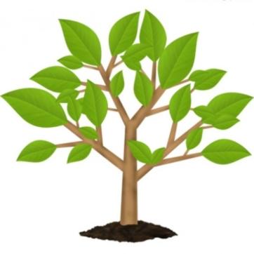 Кейс інтернет-магазину товарів агрохімії, насіння та садового інвентарю